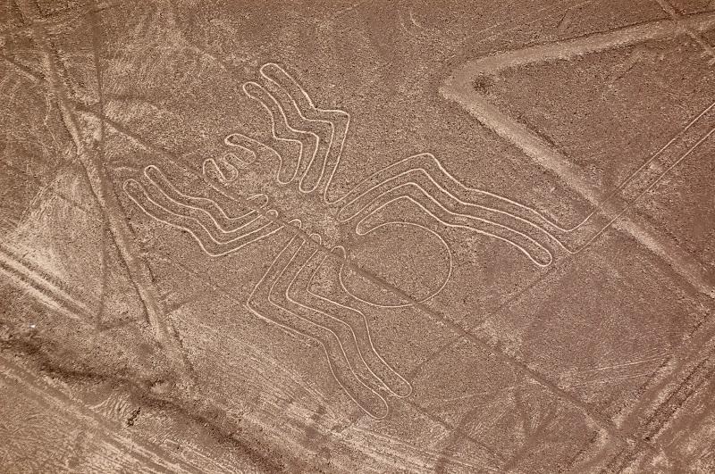 Spider Nazca Lines