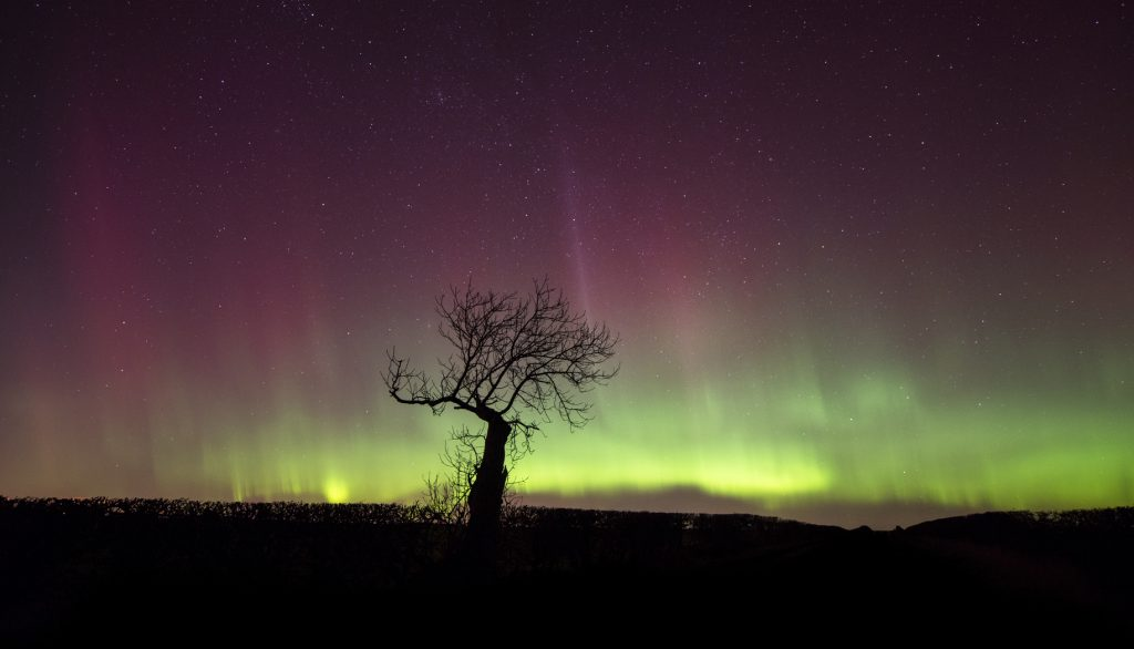 The 5 Best Destinations To See The Northern Lights